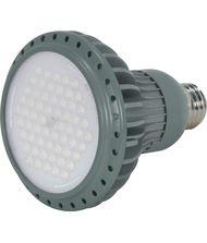 KolourOne S8814 14 Watt 40 Degree Beam Spread Gray LED PAR30
